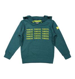DJ Dutchjeans DJ Dutchjeans jongens hoodie Think Big Green