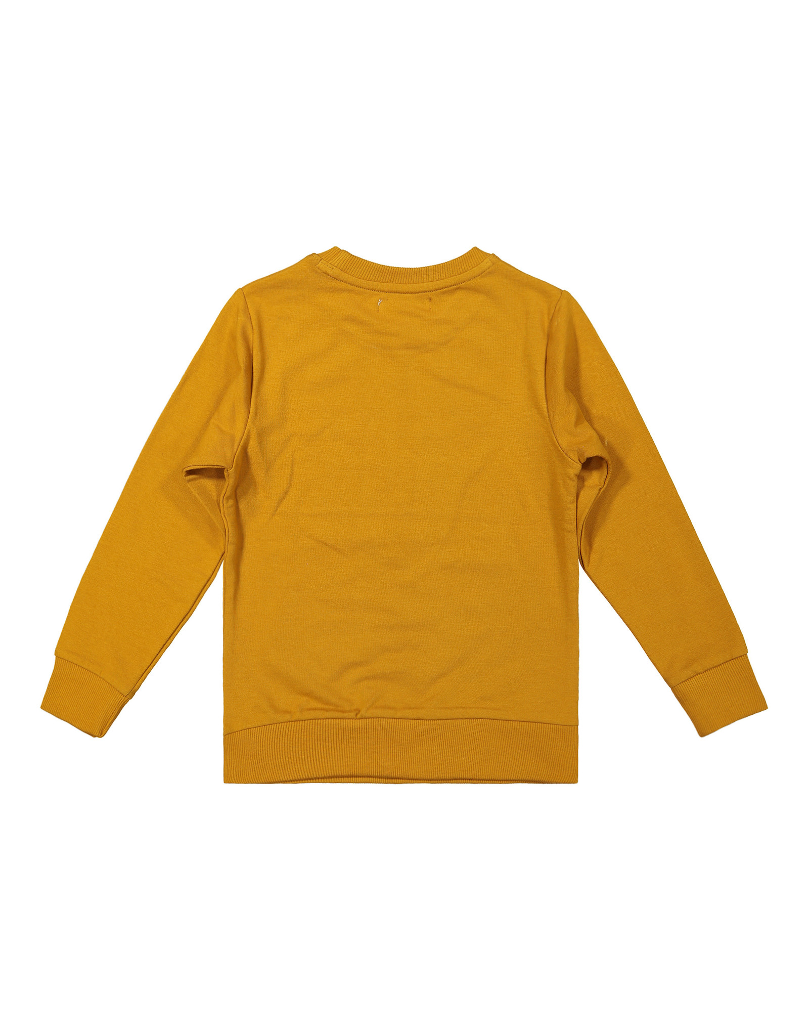DJ Dutchjeans DJ Dutchjeans jongens sweater Go Away Camel