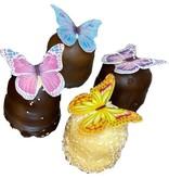 Schmetterling Schokokuss