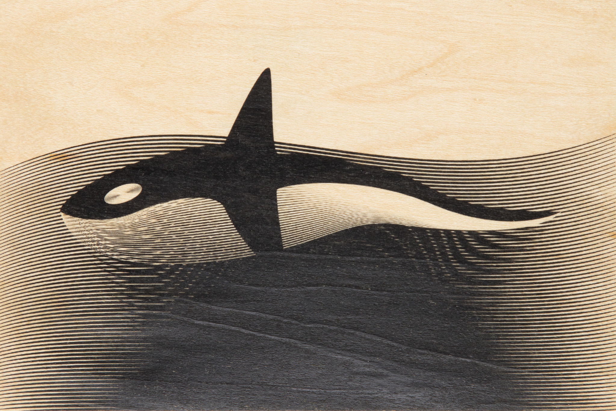 WOODHI postcard made of wood - Orca