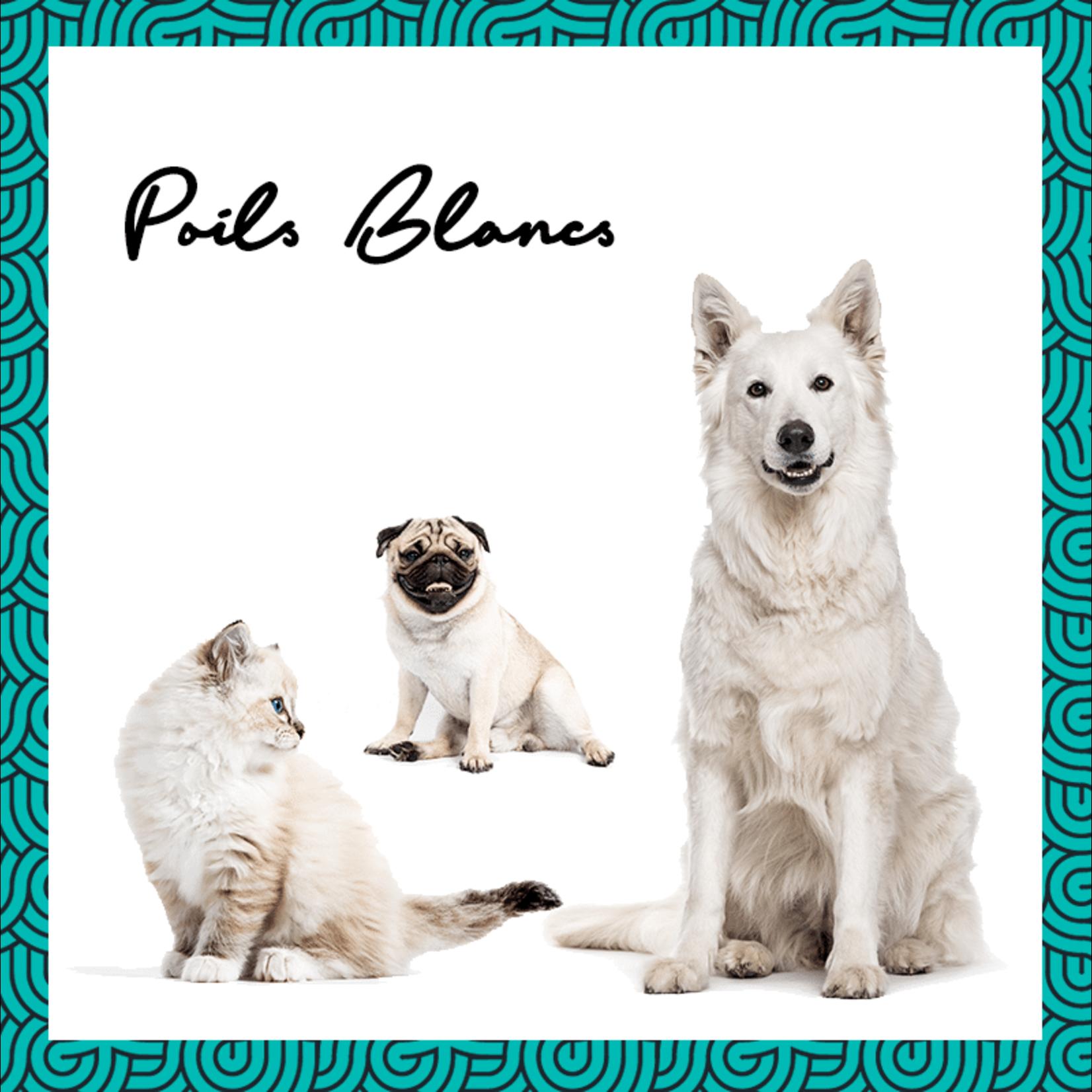 Pepet's PEPET'S Vegan Shampooblokje voor huisdieren - Witte Vacht