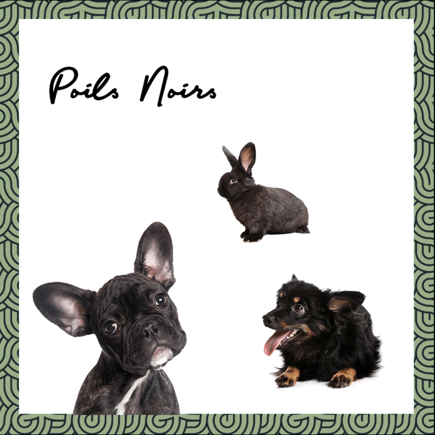 Pepet's PEPET'S Vegan Solid Shampoo for pets - Black/Dark Coat