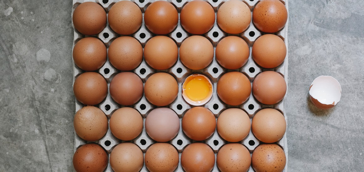 10 myths about protein, debunked!