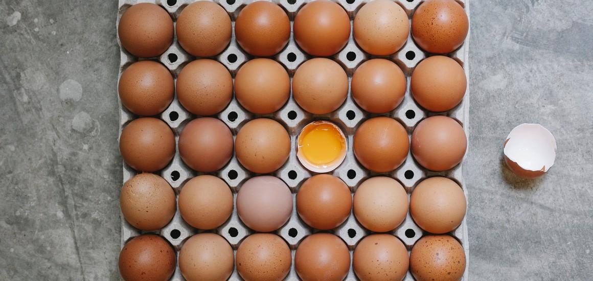On répond à 10 idées reçues sur les protéines !