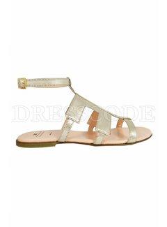 2. ELISABETTA FRANCHI Elisabetta Franchi sandaal met leren logo en enkelriempje goud