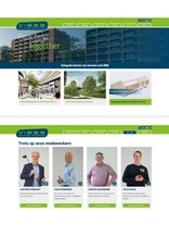 Website Vibes
