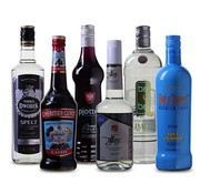 Compleet Zomer drankpakket Cocktail (6 flessen)