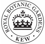 Kew Gardens; Engels servies met bloemen