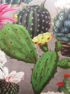 Zisensa, private collection Unieke woonaccessoires Kussen Fluweel Cactus