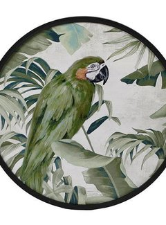 """Zisensa, private collection Wanddecoratie rond MDF """"Papegaai"""""""