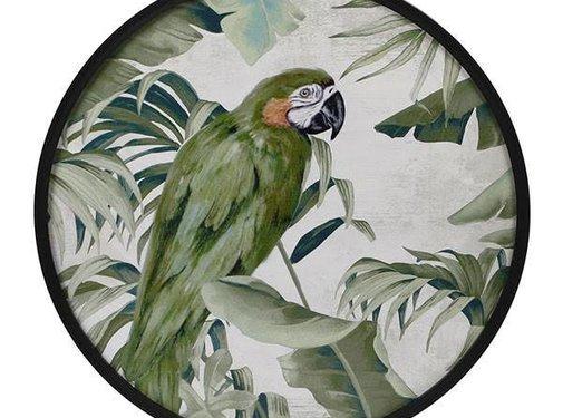 "Zisensa, private collection Unieke woonaccessoires Wanddecoratie rond MDF ""Papegaai"""