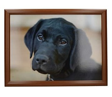 KitchenCraft; Engelse Kwaliteitsprodukten Laptray premium Labrador