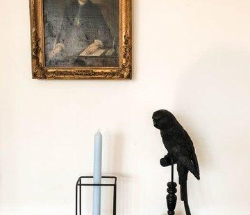 Zisensa, private collection Unieke woonaccessoires Zwarte Papegaai op voet