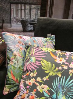 Diga by Colmore Kussen Tropical Birds Black  548