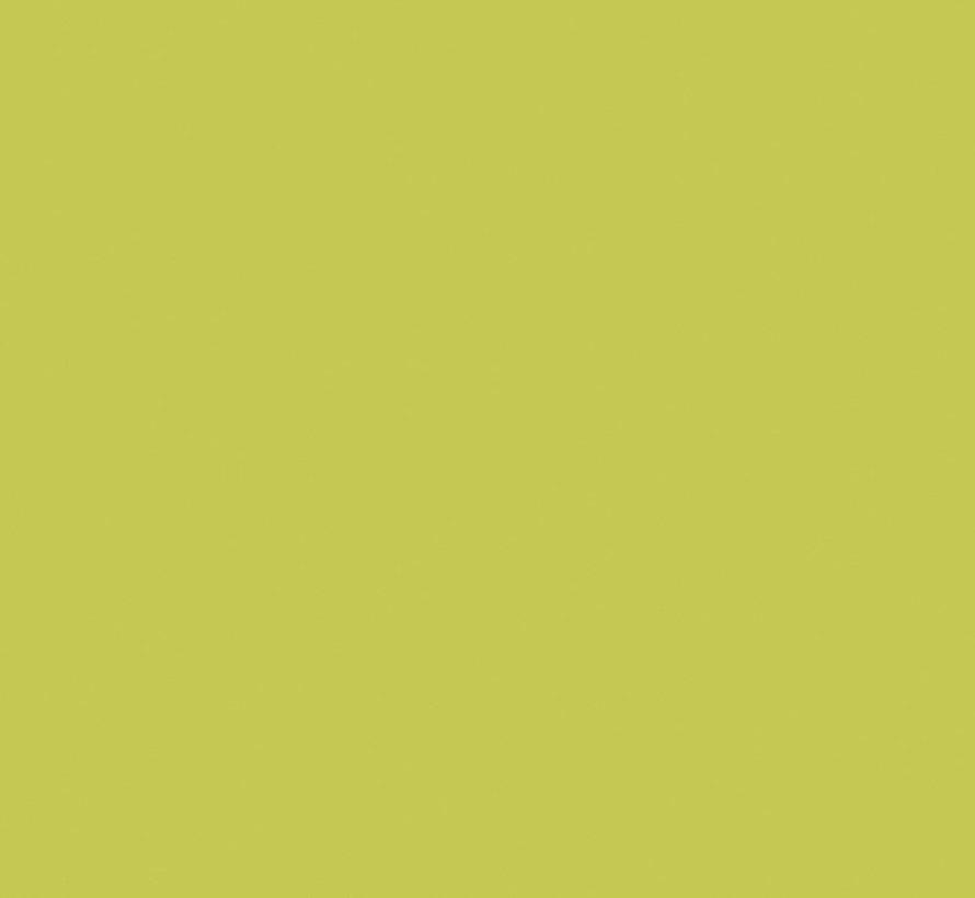 Pale Lime 70 Intelligent Matt Emulsion
