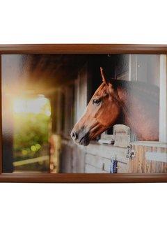 Creative Tops; Engelse Kwaliteitsprodukten Laptray, Schootkussen Paard, Stable Horse