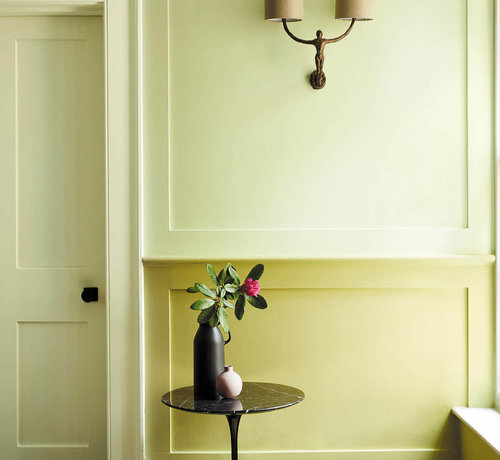 Little Greene  Verf Edith's Eye  301 Absolute Matt Emulsion
