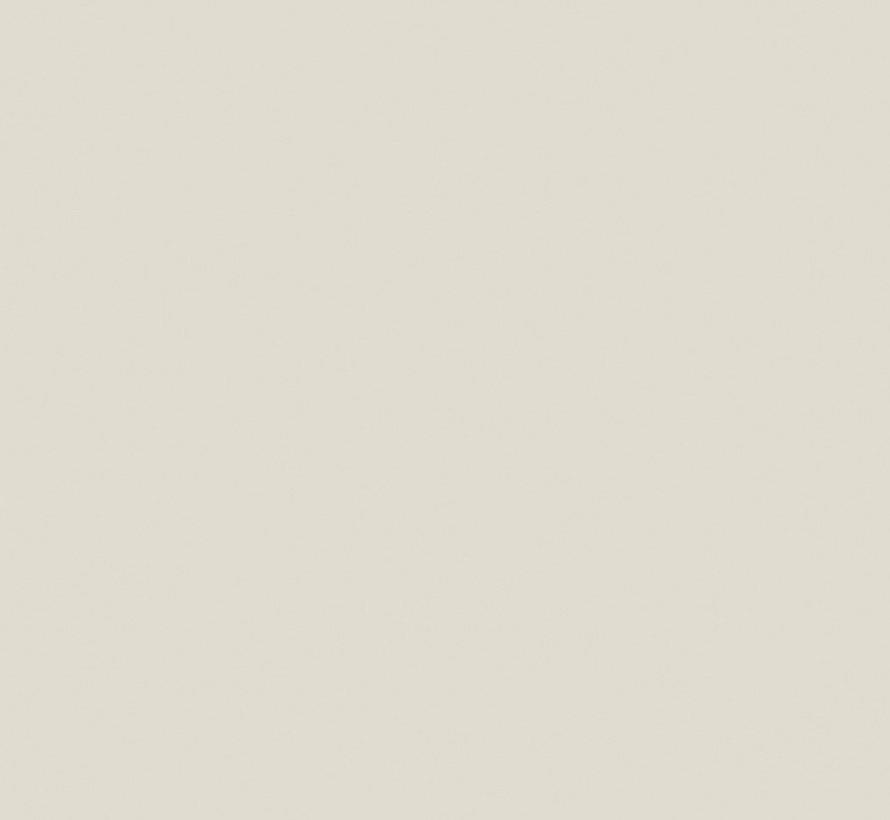 230 Ceviche Absolute Matt Emulsion