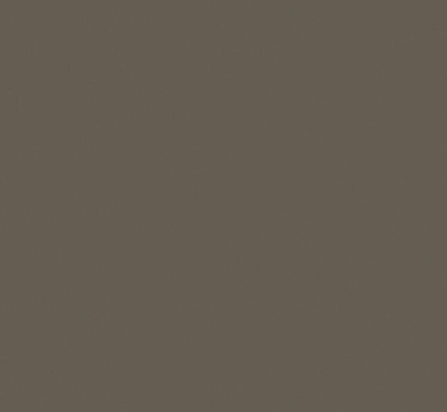 234 Grey Moss Absolute Matt Emulsion