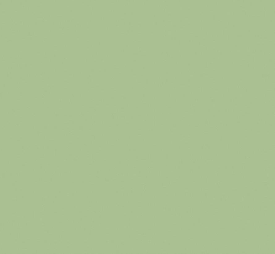 Pea Green 91 Absolute Matt Emulsion