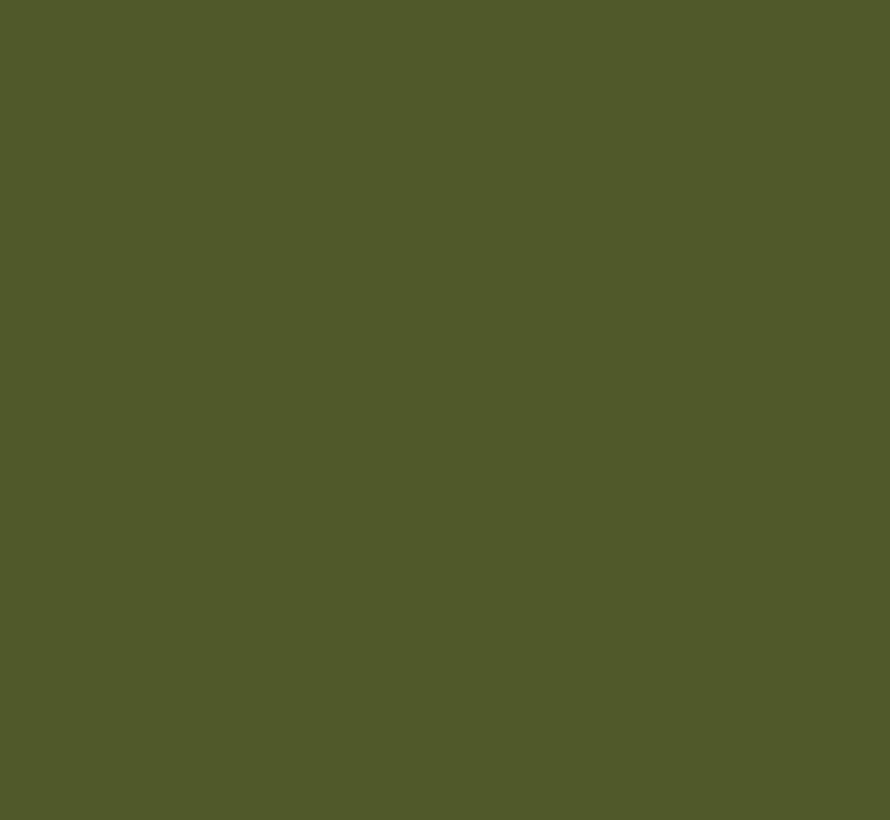 Jewel Beetle  303 Absolute Matt Emulsion