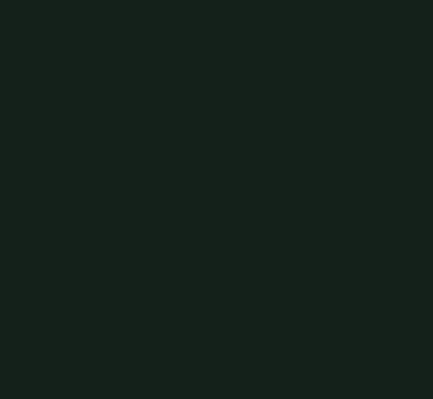 Obsidian Green 216 Absolute Matt Emulsion