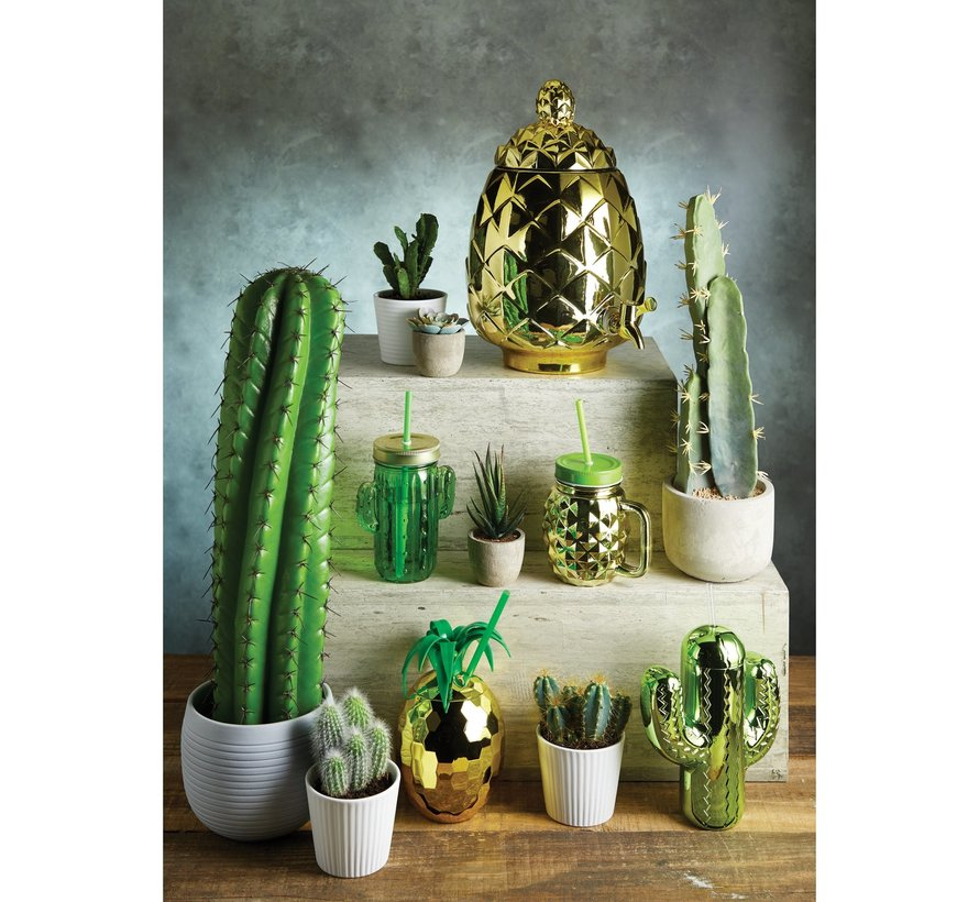 Copy of Cactus Drink jar met rietje