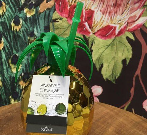 KitchenCraft; Engelse Kwaliteitsprodukten Copy of Cactus Drink jar met rietje