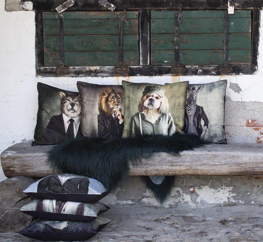 Fluwelen kussen hond