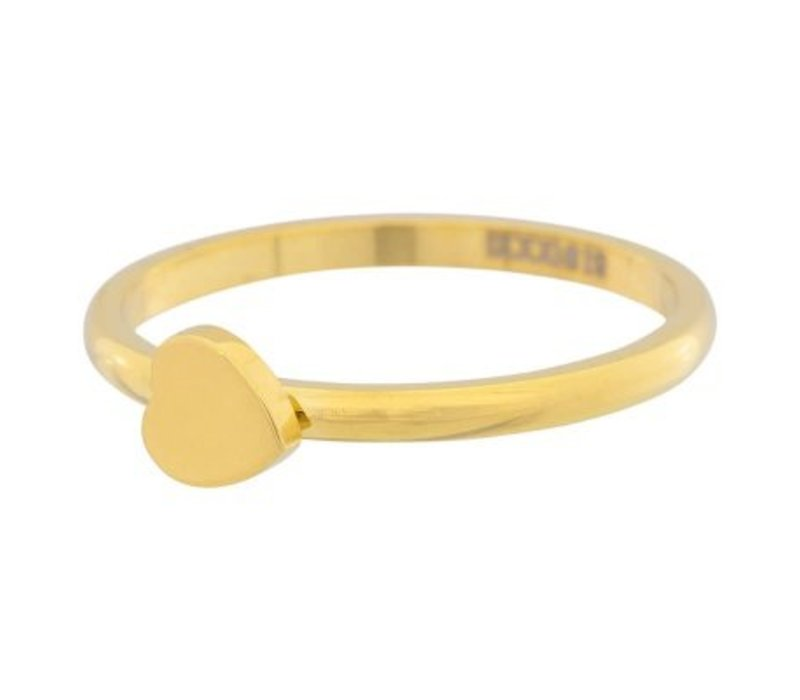 iXXXi Füllring 2 mm Herz gold