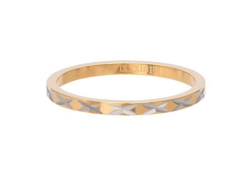 iXXXi Füllring 2 mm X Row gold