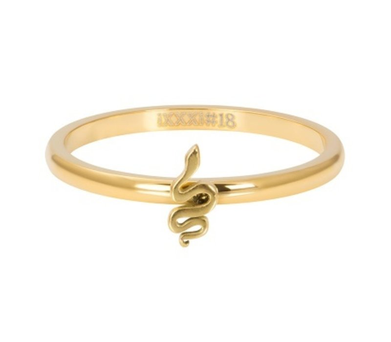 iXXXi Füllring 2 mm Symbol snake gold