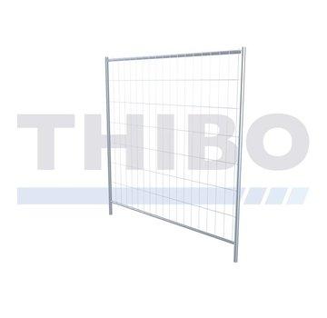 Thibo Apollo 1 in between fence