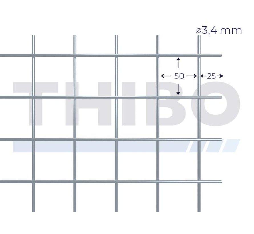 Gaaspaneel 2,5 x 2 meter met maas 50 x 50 mm, uit voorverzinkte draad 3,4 mm