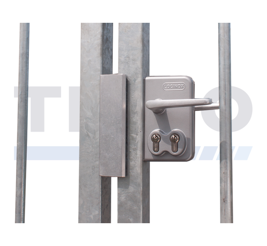Surface mounted double cylinder gate lock for swing gates