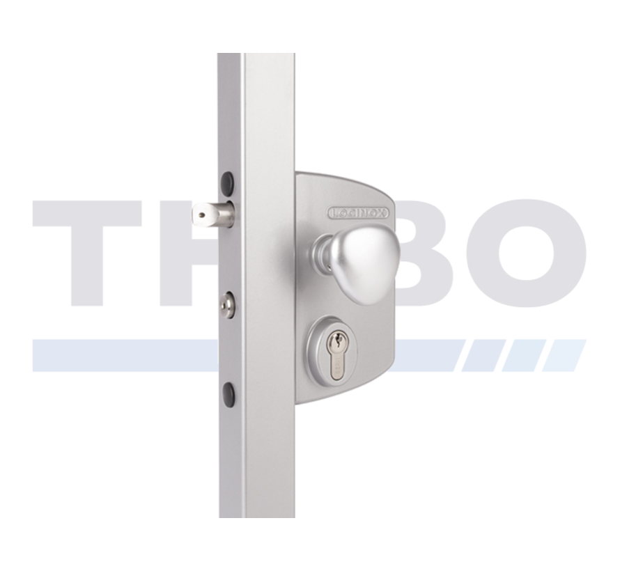 Surface mounted electric gate lock with Fail Open functionality