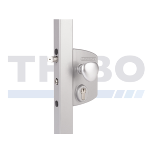 Locinox Surface mounted electric gate lock with Fail Close functionality
