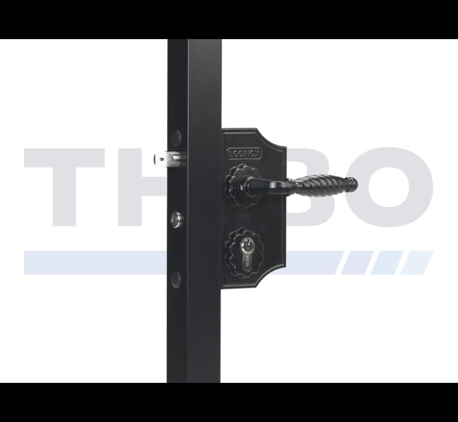 Small surface mounted ornamental gate lock