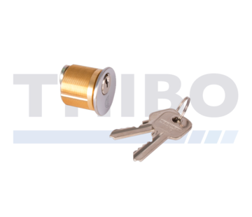 Locinox Mortise cylinders set