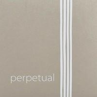 Cordes pour violoncelle Pirastro Perpetual Cadenza