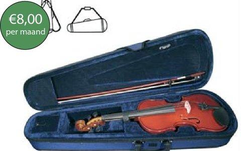 Violin basic rental