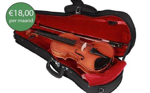 Violin premium rental