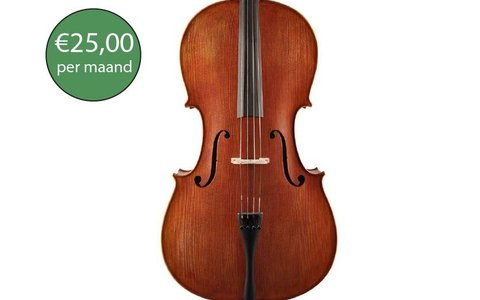Cello advanced rental