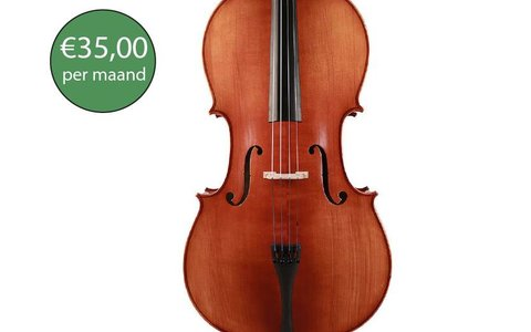 Cello premium rental