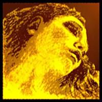 Pirastro Viool snaren Pirastro Evah Pirazzi Gold
