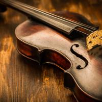 Een strijkinstrument huren: 5 zaken waarop je moet letten