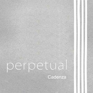 Pirastro Viool snaren Pirastro Perpetual Cadenza