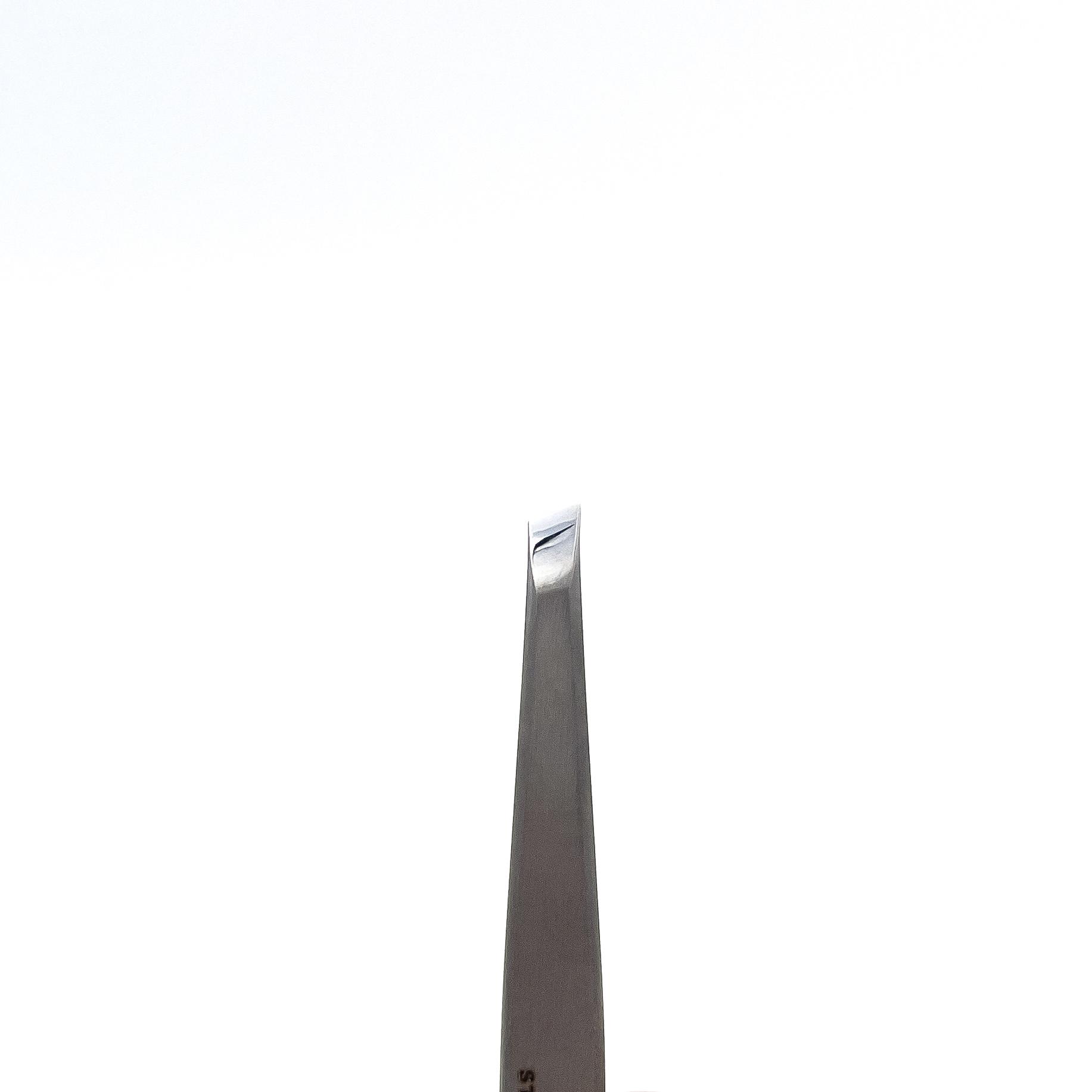 STALENA Pince à épiler large, bout oblique (P-07)