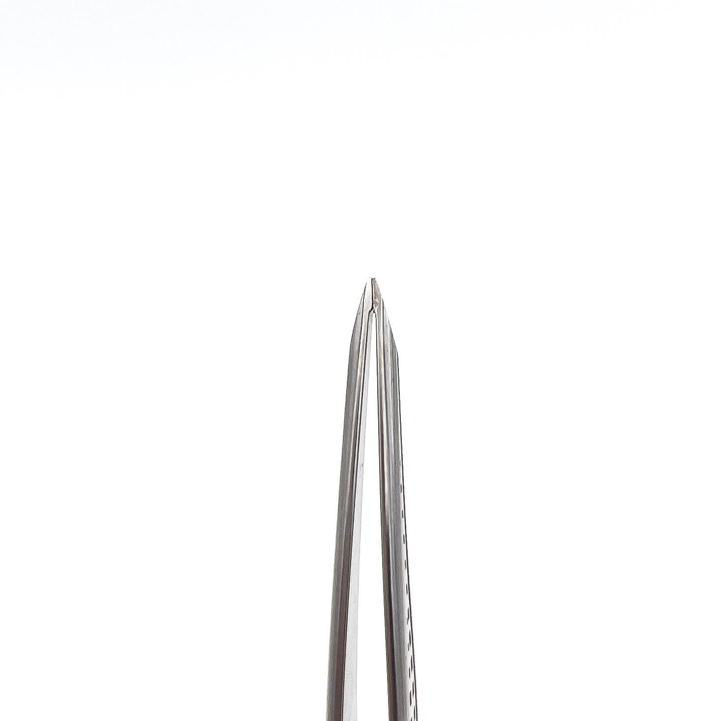 STALENA Pince à épiler décorée courbé, bout oblique (P-12)