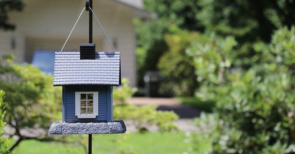 Is jouw tuin al zomerproof? Wij geven je tuininspiratie voor de zomer!